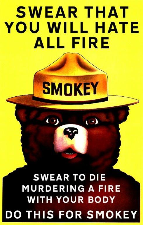 Smokey Bear Is Gay