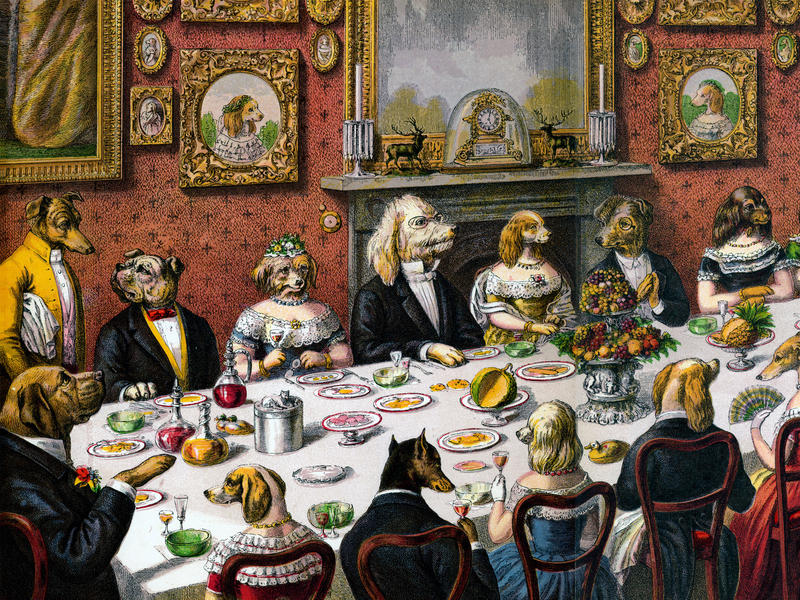 dinner-for-dogs